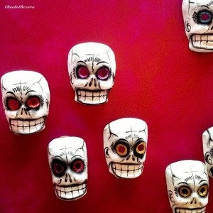 Fuchsia Skull picture